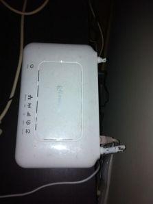 router perro